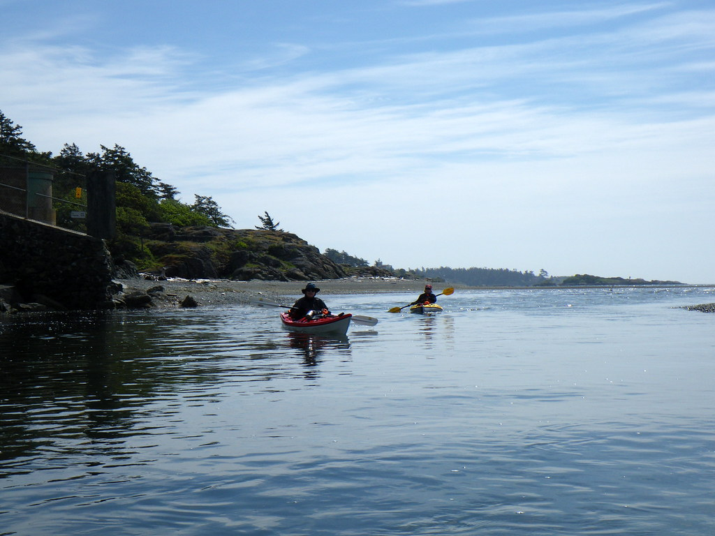 2009-05-17 Esquimalt Harbour 086
