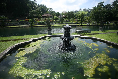 Tirta Gangga fountain w/ algae