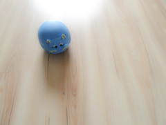 Dog's toy (Daniel Kulinski) Tags: camera wood blue test dog abstract home digital corner work ball gum myself lens fun toy photo flickr floor angle unique daniel small wide captured may picture first samsung mini made 24 hd abstraction dashboard 24mm did left 2009 hipo 1000 thousand compact schneider wideanglelens righ kuliński amoled didmyself tl320 samsungimaging wb1000