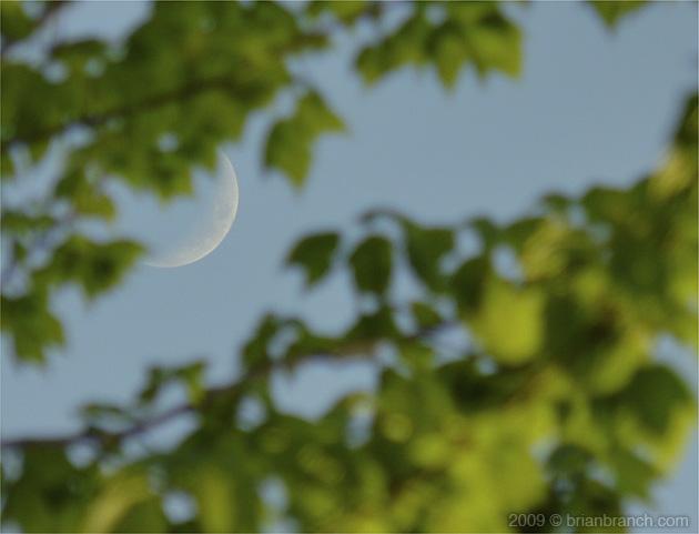 P1010657_moon