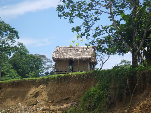 House along the Rio Platano