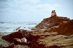 stay a while (Nela Spotmatic) Tags: film beach 35mm nc asahi pentax takumar lajolla spotmatic 160 kodakportra160nc 1450 hardwaresp