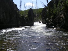 Firehole River Swimming Rapids