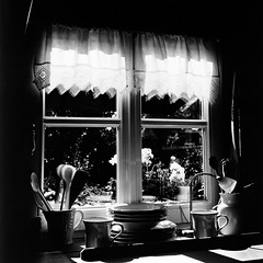 Summer window (Sven T.) Tags: summer blackandwhite bw 120 6x6 tlr film window analog mediumformat garden sommer fenster sw delta100 schwarzweiss garten rhs vindue rollfilm mittelformat ilfordwarmtone fortepolygradevrc rolleihighspeed rolleirolleicordia