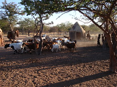 Himba Village (e.w. cordon) Tags: namibia himba african africa travel worldtravel ewcordon southernafrica