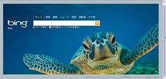 Bing Japanese