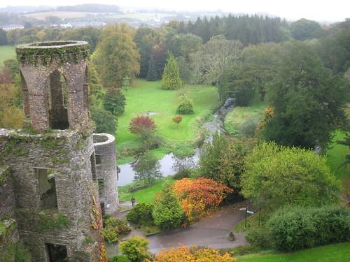 Plants of Blarney Castle