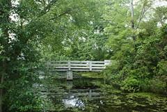 Parvin State Park (Leroy Hickman Jr--Ravendark Photography) Tags: park state parvin