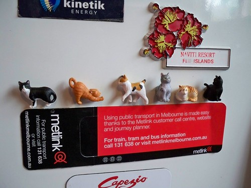 kitty magnets 270