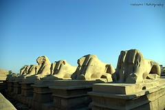 Karnak temple (Stephane Mee) Tags: temple egypt karnak luxor archeology thebes egyptology glodenglobe