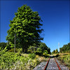 ~ Spot the Orange ~ (ViaMoi) Tags: railroad blue autumn sky orange canada tree green fall leaves ottawa tracks himmel farbe viamoi