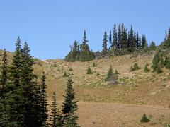 Views arriving at basin just below Marmot Pass.