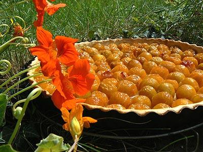 tarte mirabelle cuite (fruits entiers ).jpg