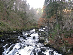 IMG_2931 (jimmy_chivas) Tags: scotland dunkeld 2008