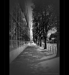 ... urban canyon ... (oliver's | photography) Tags: city urban blackandwhite white black monochrome field photoshop canon germany deutschland eos mono flickr raw view image  cologne sigma kln pointofview adobe stadt frame 2009 depth blick copyrighted stdtisch blickwinkel farblos pixelwork blackwhitephotos canoneos50d adobephotoshoplightroom sigma1770mmf2845dchsm pixelwork09photography oliverhoell allphotoscopyrighted