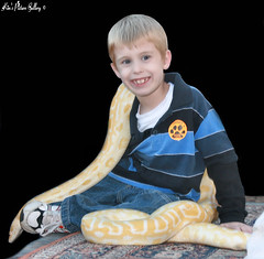 ~ CHIP ~  The Brave One!!! (~Kim's Picture Gallery~) Tags: cute love smile snake handsome fair grandson chip brave hugs