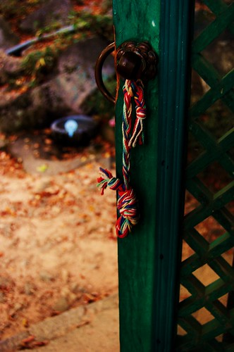 you just take pictures of doorknobs and rope