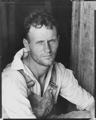 Floyd Burroughs, cotton sharecropper. Hale Cou...