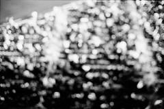 where've you been? (Redfishingboat (Mick O)) Tags: leica nyc bw abstract film 35mm bokeh m2 selfdeveloped kodaktrix400 handmetered hc110dilutionb citifield canoncanoscan8800f voigtlandernokton35mmf14 developedfor675min
