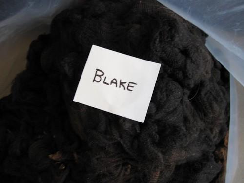 Blake in a bag