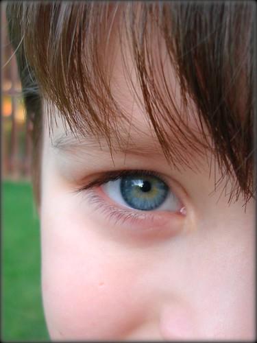 nt eyes2
