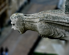 Stone Gargoyle (Irena Portfolio) Tags: sculpture stone gargoyle oxford universitychurch