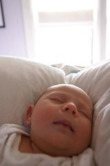 _MG_8111-44 (k.a. gilbert) Tags: morning sleeping baby window lucy bed infant peaceful naturallight newborn 116 windowlight lightroom tokina1116mmf28