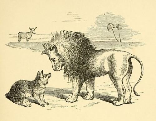 Asinus, Leo et Vulpes Perfida