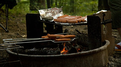 Cooking Hot Dogs on the Campfire