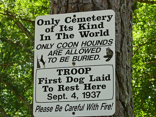 Only Cemetery of Its Kind In The World