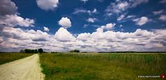 Road to nowhere (Balázs B.) Tags: road trip travel blue summer vacation sky cloud green field grass clouds canon landscape scenery hungary ég felhő táj magyarország út puszta zöld nyár kék föld fű 40d soltvadkert
