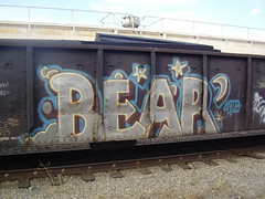Bear. (A & P Bench) Tags: railroad canada art train photography graffiti fan steel painted graf stock rail railway trains canadian railcar spraypaint boxcar graff piece hopper railfan freight rolling traingraffiti freighttrain rollingstock benched benching freightgraffiti freighttraingraffiti benchers