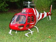 T-Rex 600 im Ecureuil Rumpf (dolce geraldo) Tags: hobby helicopter rc heli hubschrauber align modellbau rumpf thundertiger as as355n rcmodellbau trex600 ecureul
