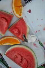 (shinotanaka) Tags: animals butterfly butterflies paintedladies paintedlady