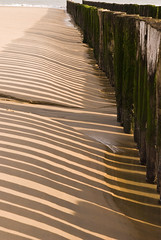 DSC_8788 (sarasocke) Tags: sea holland beach strand meer shadows schatten breakwater supershot winnerbc
