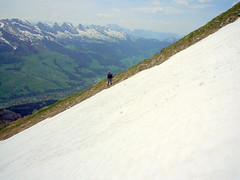 Wildhauser Schafberg (Pelegon) Tags: street travel summer snow mountains alps green nature water trekking walking schweiz switzerland swiss natur ostschweiz berge mountaineering gras alpen stgallen wandern schafberg alpstein mountaining churfirsten toggenburg wildhaus swissness brisi gamplt wildhauserschafberg