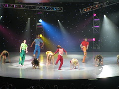 sytycd 514 (courtneh71282) Tags: sytycd