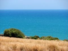 Mare (Giu_sci) Tags: sea summer beach mediterraneo italia mare estate sicily viaggio sicilia italiy vegentazione