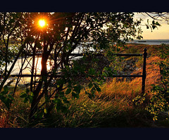 late light (pete ware) Tags: trees sunset couple post pete sunburst railing ware boyandgirl riverscape rivermedway nikond90 motneyhill peteware loversapart