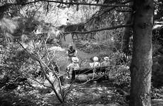 On vient voir le paysage... (woltarise) Tags: montréal botanique jardin femmes banc repos été 2003