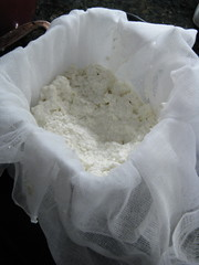 Adding curd to the mold