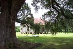 Slave Cabins ~ Louisiana ~ Mississippi Delta (Onasill ~ Bill Badzo) Tags: trees cane oak louisiana delta sugar abandon plantation mississippiriver antebellum slave cabins plantations slavecabins onasill