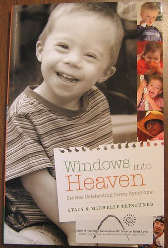 Windows Into Heaven - Stories Celebrating Down Syndrome by Stacy & Michelle Tetschner