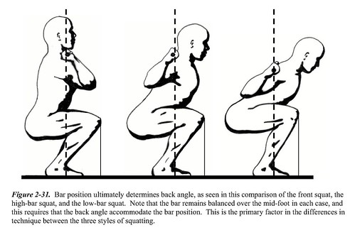 Three different squats requires three different models.