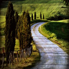 the road (beesquare) Tags: road italy evening italia tuscany cypress pienza toscana valdorcia soundtrack gladiator agriturismo movielocation hanszimmer nowwearefree terrapille natureselegantshots tuscanhomesweethome