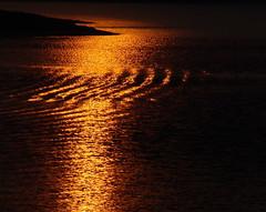 crossed tint - sunset in lake (applelike) Tags: sunset lake gold golden ripple wave korea soe appletree appletrees daejeon naturesfinest mywinners applelike platinumphoto theturntable goldendiamondblog daejeom
