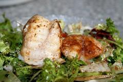 Seeteufel und Jakobsmuschel auf Salat