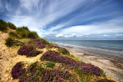 Purple heather and blue skies (Chris Beesley) Tags: blue sky seascape beach landscape scotland seaside highlands heather wideangle findhorn sigma1020mm grampian pentaxk100dsuper