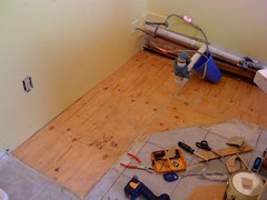 My subfloor, it is a thing of beauty