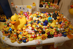 20090821 Rubber Ducky, You're the One